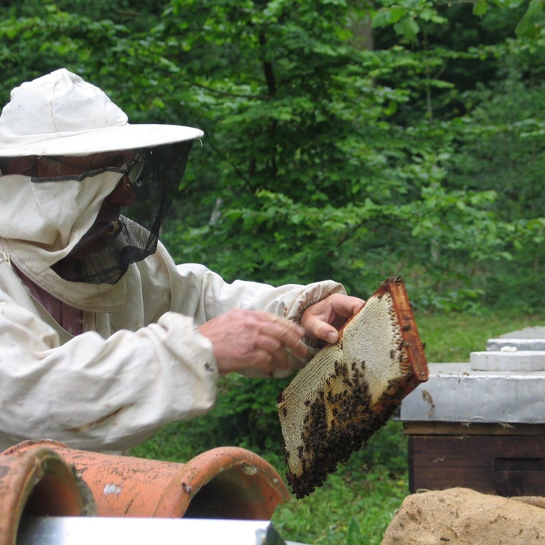 Artykuły pszczelarskie